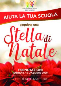 thumbnail of stella di natale